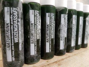 Weizengras Entsafter