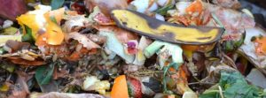 compost-709020_640 (1)