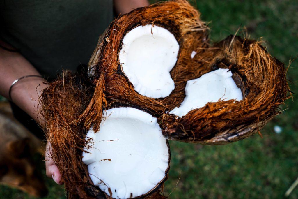 reife Kokosnuss ohne Kokoswasser