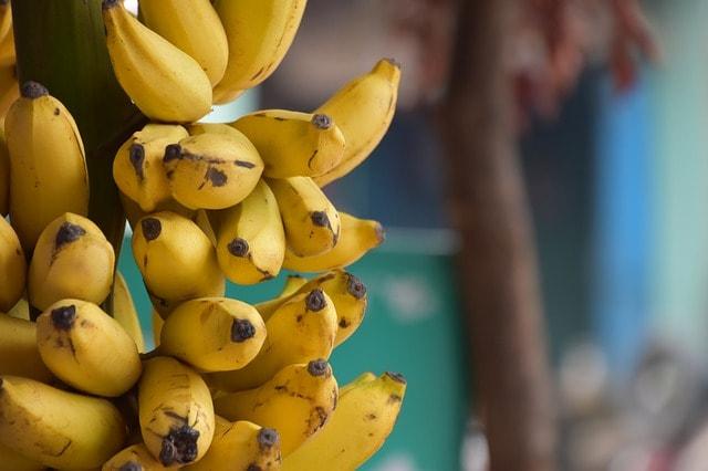 banana-3480267_640-min